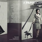 002 Magazine- PaperScapes