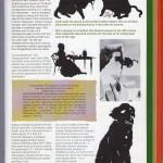 magazine-article-cindi-rose